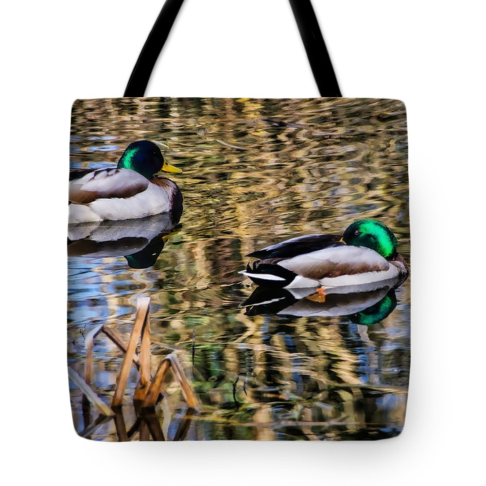 Mallards Tote Bag featuring the photograph Mallards In The Reeds by Susie Peek