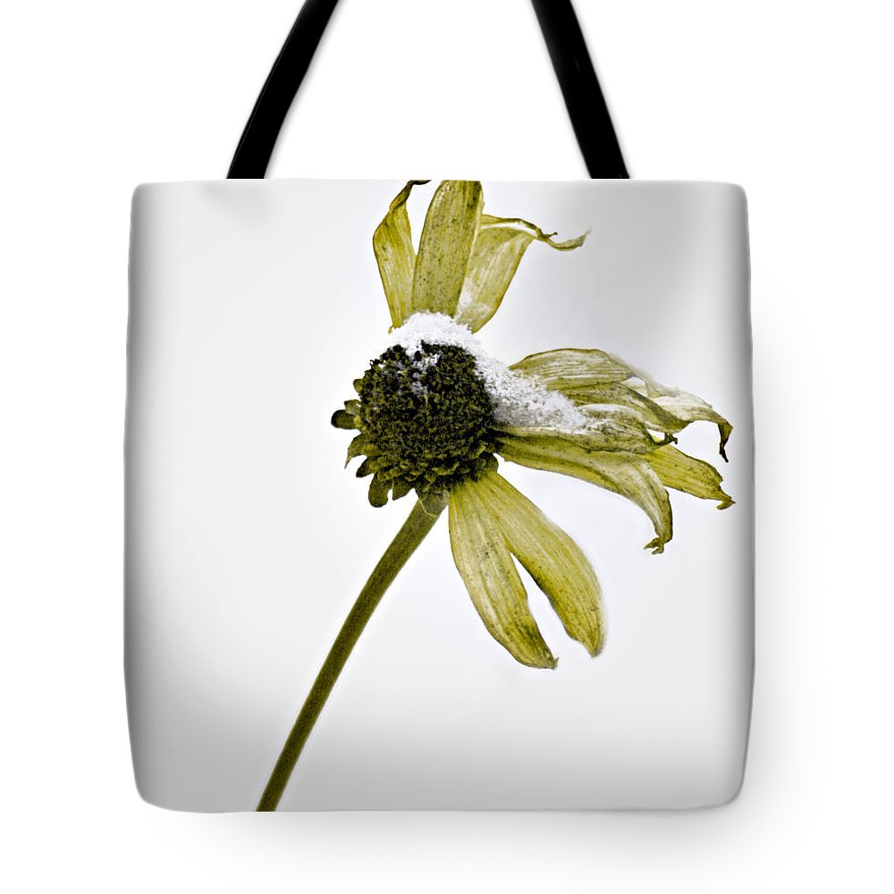 Flowers Tote Bag featuring the photograph Malnourished Seed by The Artist Project