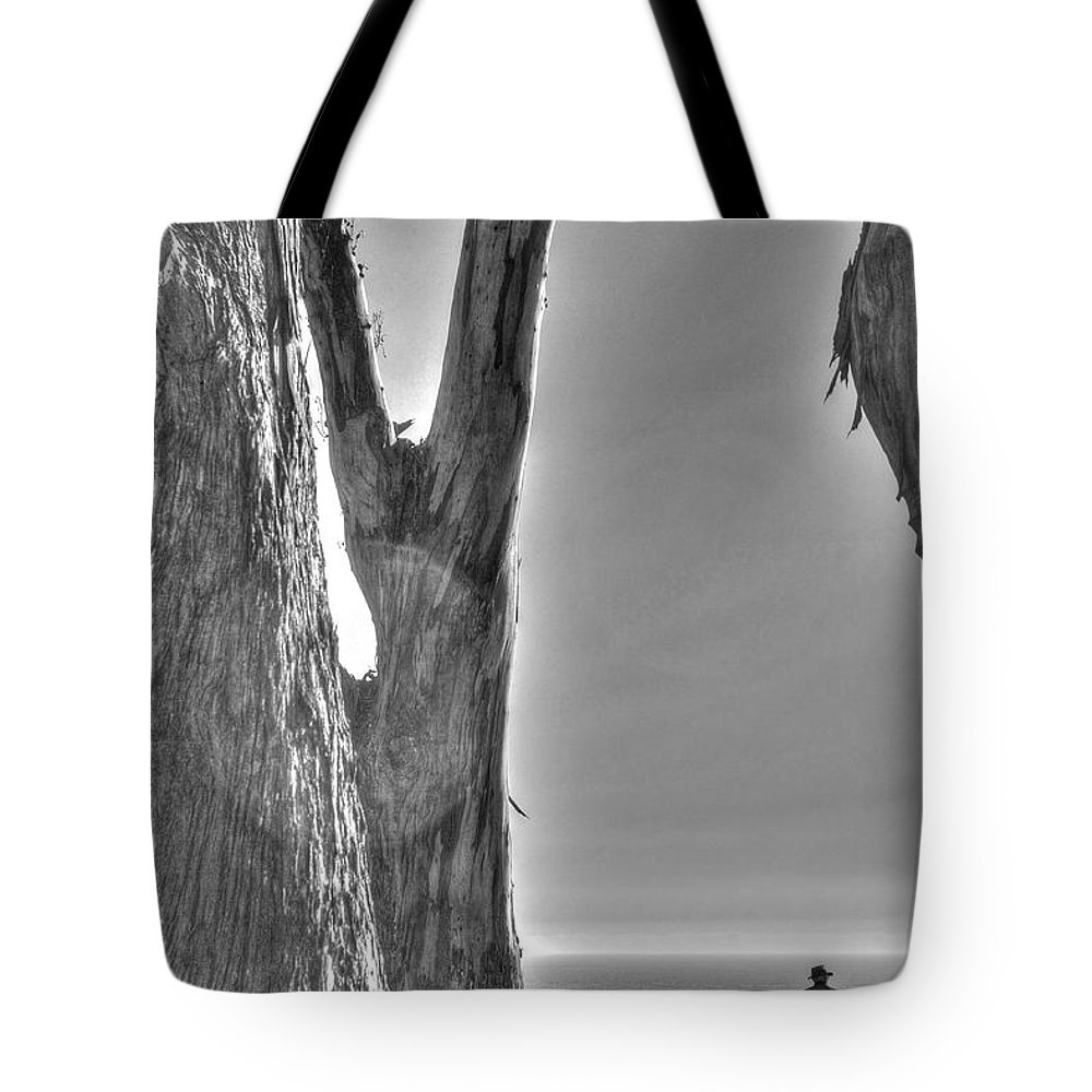 Bluff Tote Bag featuring the photograph Man Dog On Bluff 2 by SC Heffner