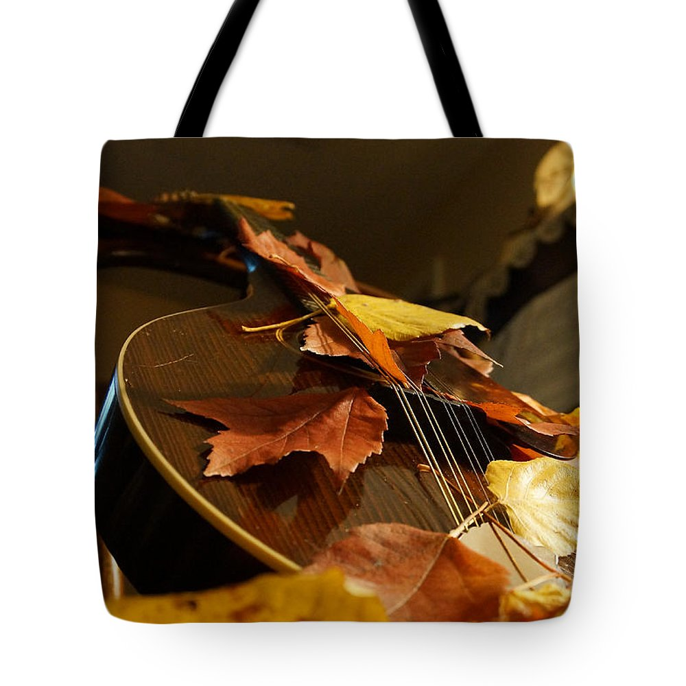 Mandolin Tote Bag featuring the photograph Mandolin Autumn 3 by Mick Anderson