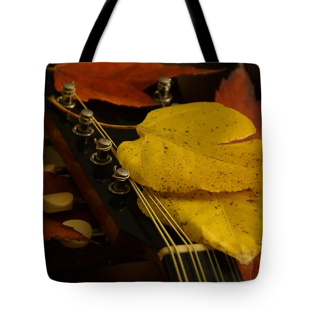 Mandolin Tote Bag featuring the photograph Mandolin Autumn 6 by Mick Anderson