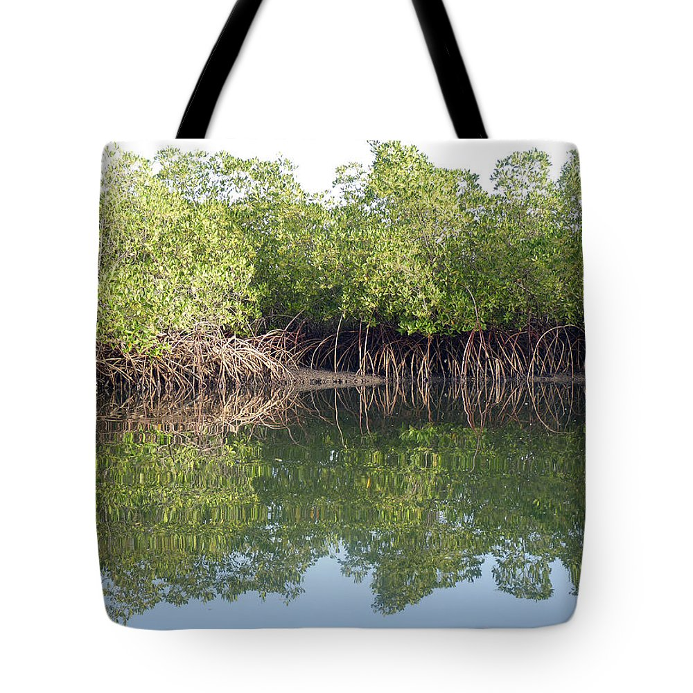 Mangrove Creek Tote Bag featuring the photograph Mangrove Refelections by Tony Murtagh