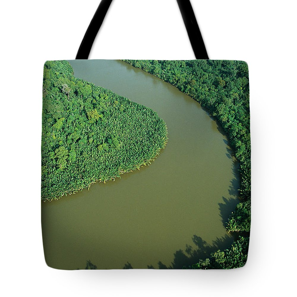 Jh Tote Bag featuring the photograph Mangrove Rhizophora Sp In Mahakam Delta by Cyril Ruoso