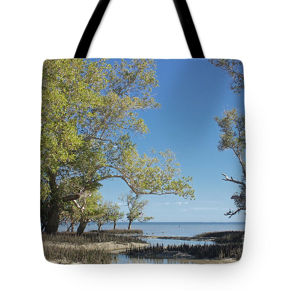Africa Tote Bag featuring the photograph mangroves in Madagascar 4 by Rudi Prott