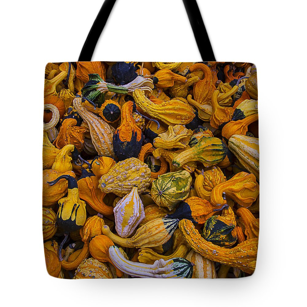 Gourd Tote Bag featuring the photograph Many Colorful Gourds by Garry Gay