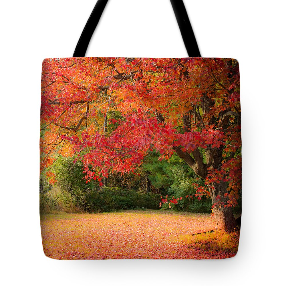 Autumn Foliage New England Tote Bag featuring the photograph Maple In Red And Orange by Jeff Folger
