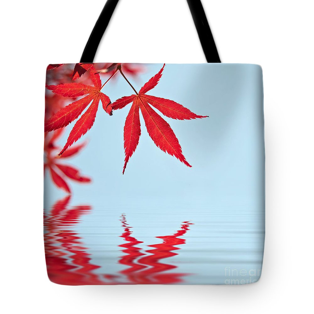 Autumn Tote Bag featuring the photograph Maple Reflection by Delphimages Photo Creations