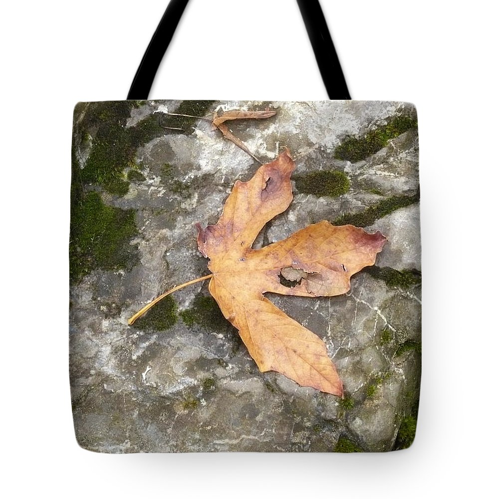 Leaf Tote Bag featuring the photograph Maple Rock by Nicki Bennett