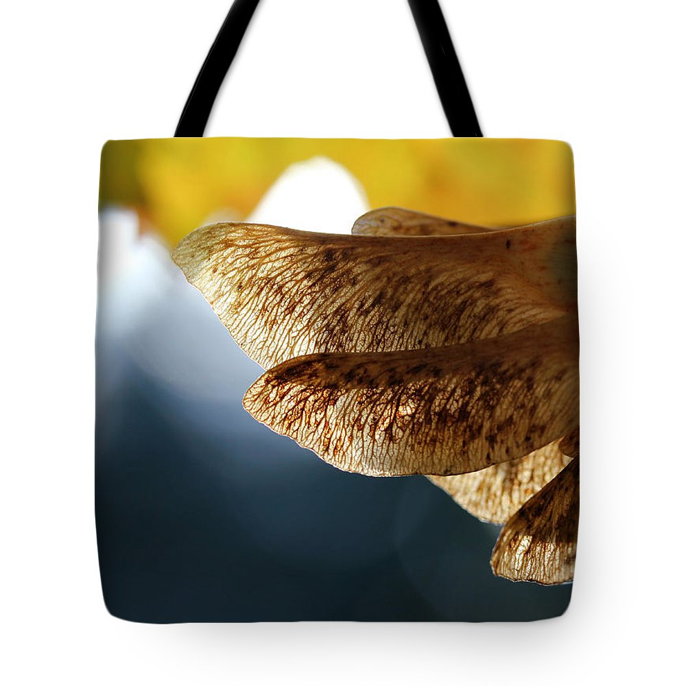 Maple Tote Bag featuring the photograph Maple Seeds 2 by Mary Bedy