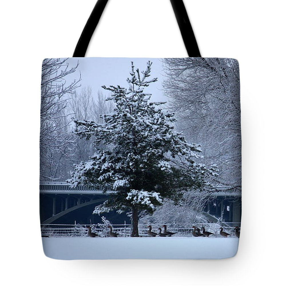 Geese Tote Bag featuring the photograph March Of The Geese by Carol Groenen