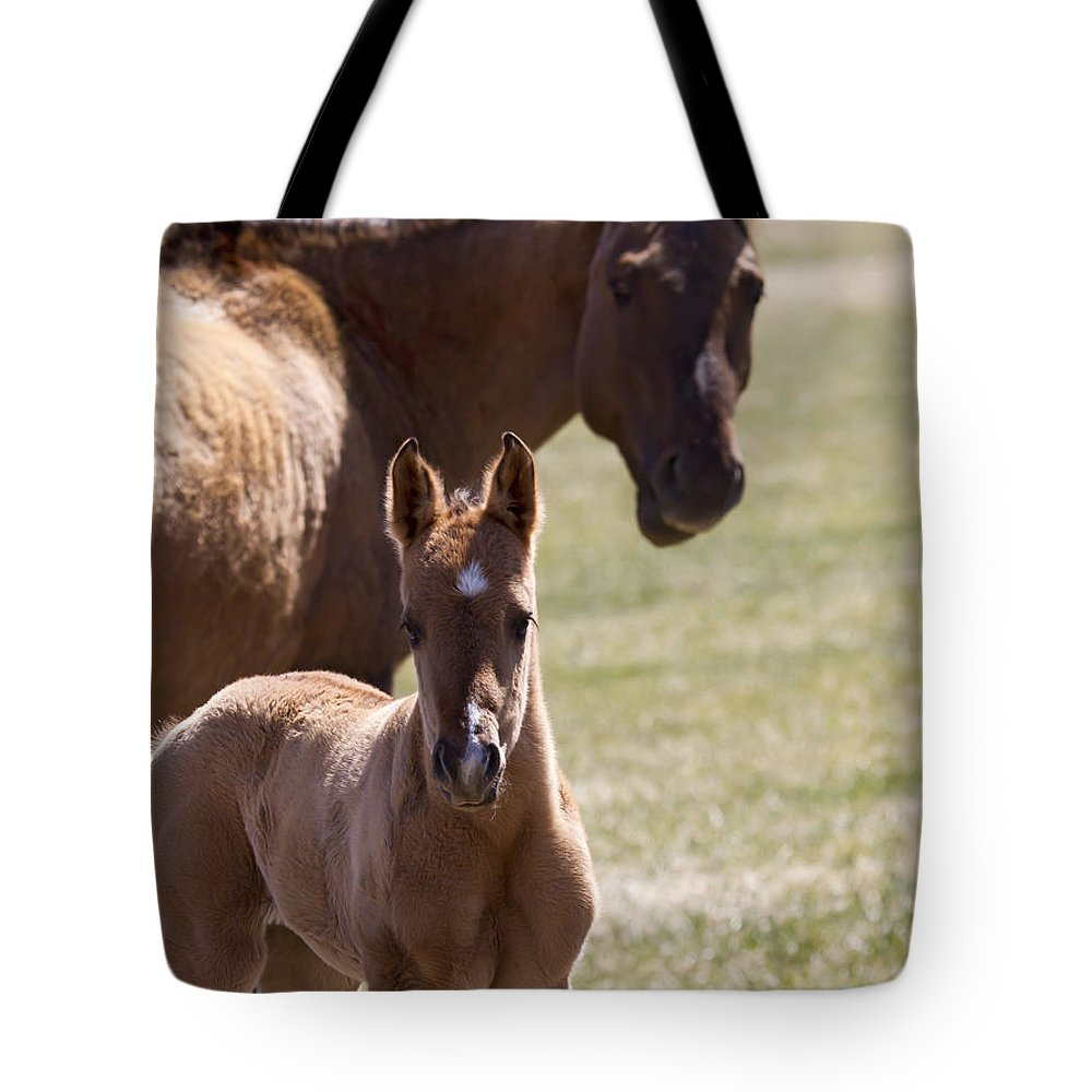 Horse Tote Bag featuring the photograph Mare And Foal  #0659 by J L Woody Wooden