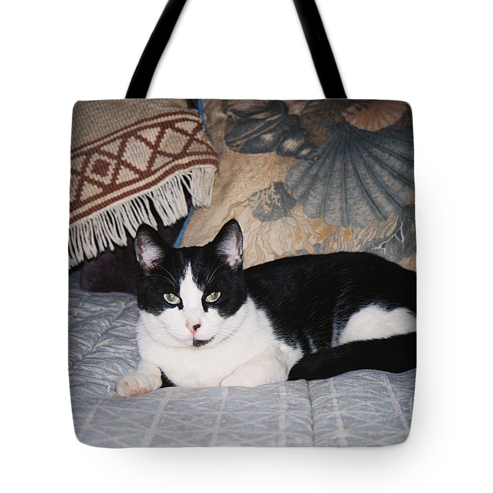 Cat Tote Bag featuring the photograph Marius by Judy Bottler