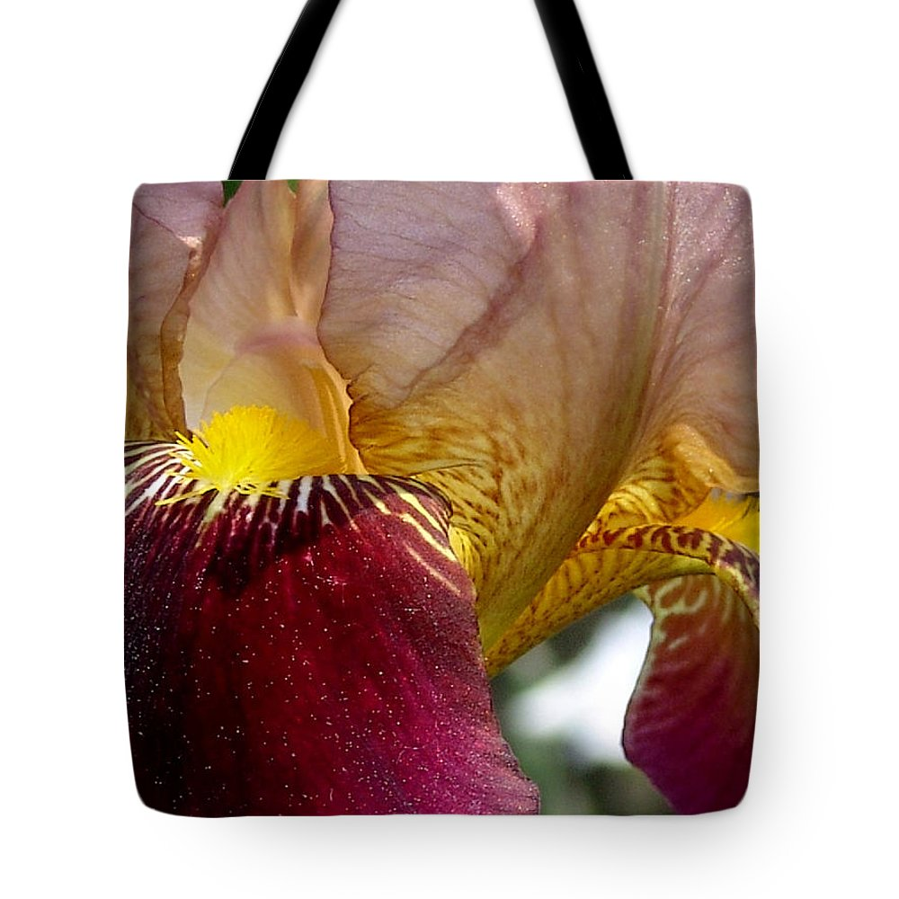 Maroon Tote Bag featuring the photograph Maroon Iris by David Hohmann
