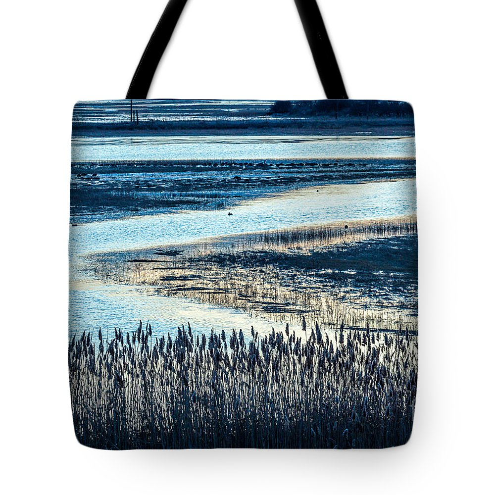 America Tote Bag featuring the photograph Marsh Reeds by Susan Cole Kelly