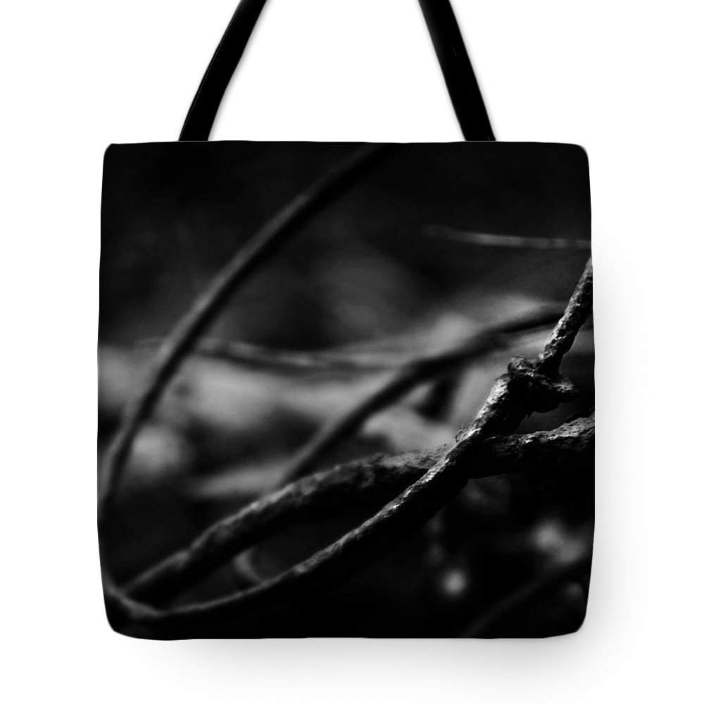 Rust Tote Bag featuring the photograph May The Circle Be Unbroken by Rebecca Sherman