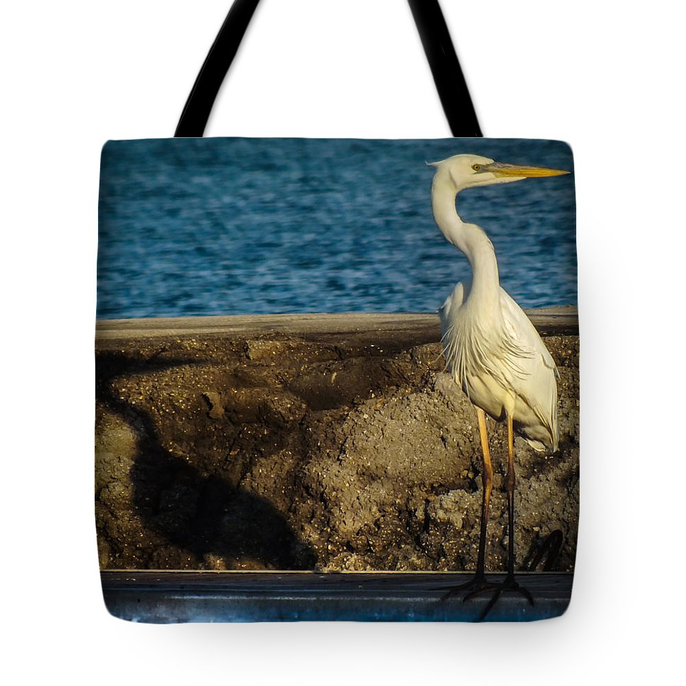 Me And My Shadow Tote Bag featuring the photograph Me And My Shadow by Karen Wiles