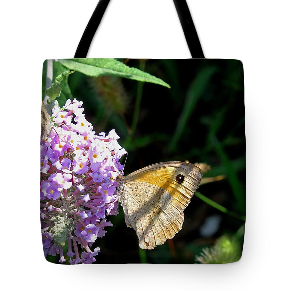 Meadow Brown Butterfly Tote Bag featuring the photograph Meadow Brown Butterfly by Tony Murtagh