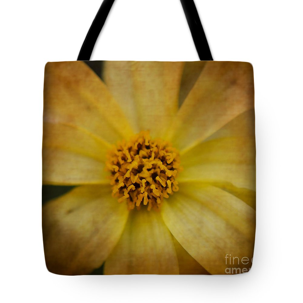 Yellow Tote Bag featuring the photograph Mellow Yellow 2 by Judy Wolinsky