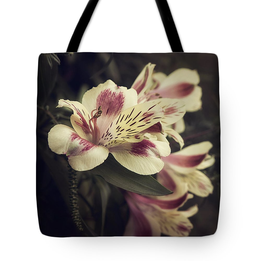 Floral Tote Bag featuring the photograph Memories by Darlene Kwiatkowski