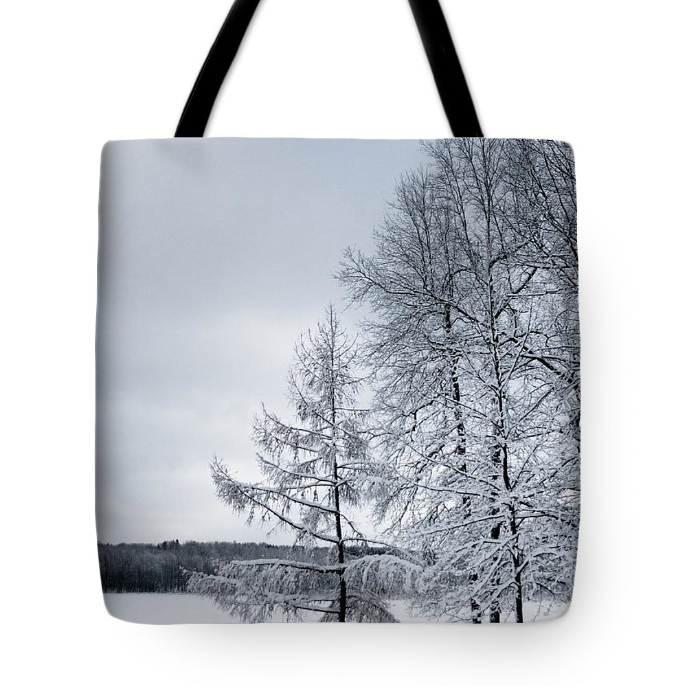 Trees Tote Bag featuring the photograph Mendon Pond Trees by Ken Marsh