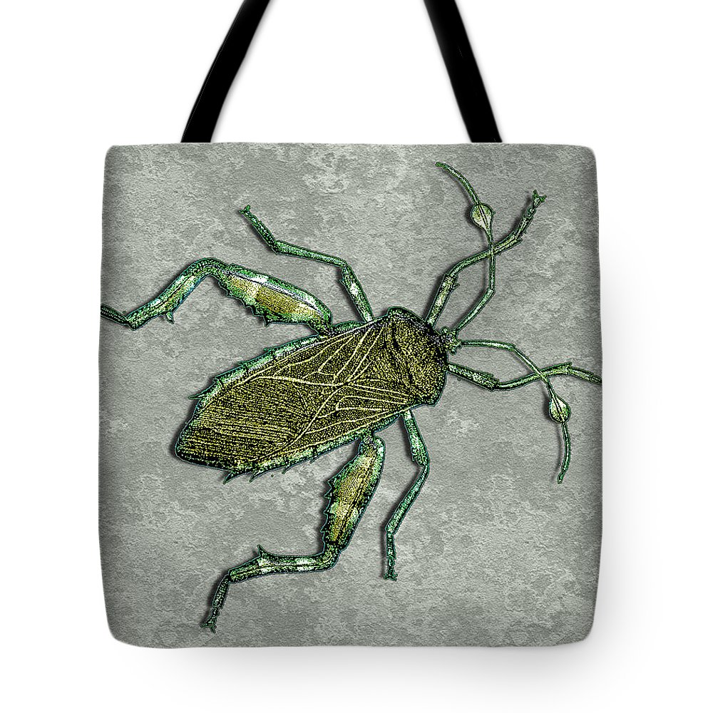 Prehistoric Pen+and+ink Watercolor Fantasy Imaginary Insect Bug Tote Bag featuring the painting Metallic Green And Gold Prehistoric Insect by Elaine Plesser