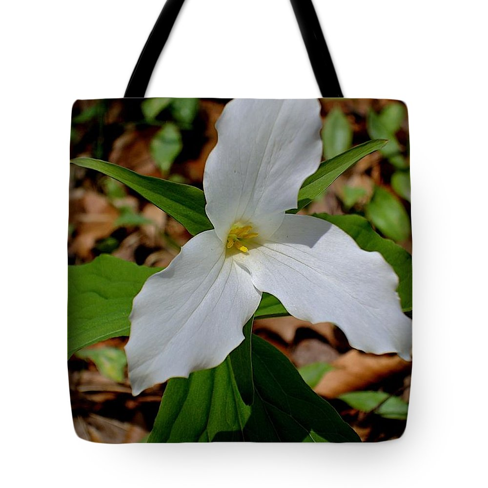 Flowers Tote Bag featuring the photograph Michigan by Joseph Yarbrough