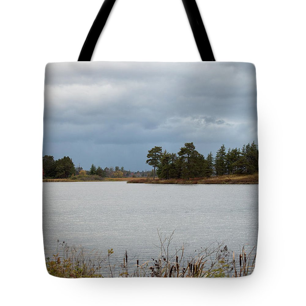 Upper Peninsula Tote Bag featuring the photograph Michigan Wetland by Linda Kerkau