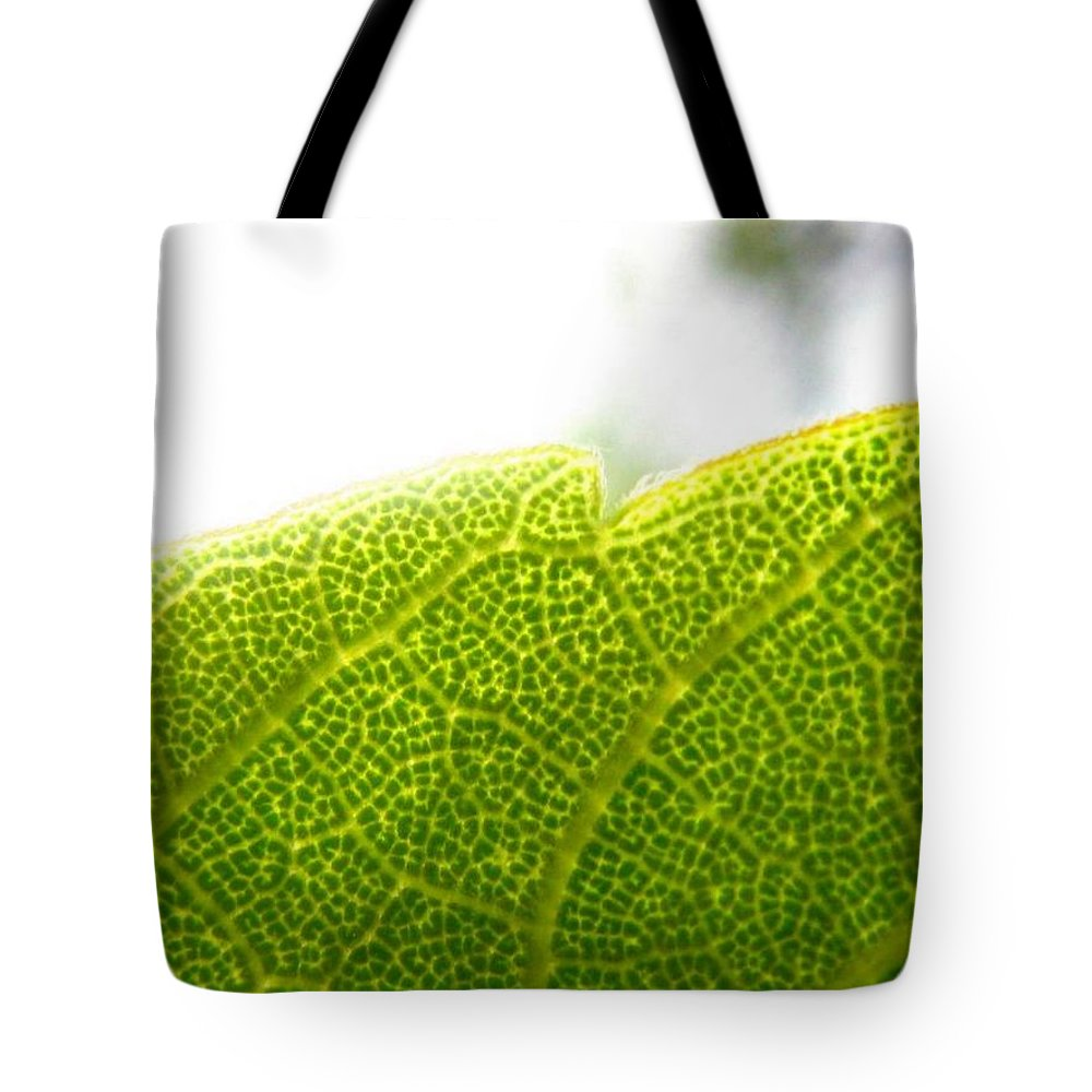 Leaf Tote Bag featuring the photograph Micro Leaf by Rhonda Barrett