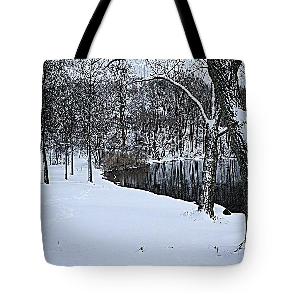 Winter Tote Bag featuring the photograph Mid-winter Storm by Dora Sofia Caputo Photographic Design and Fine Art