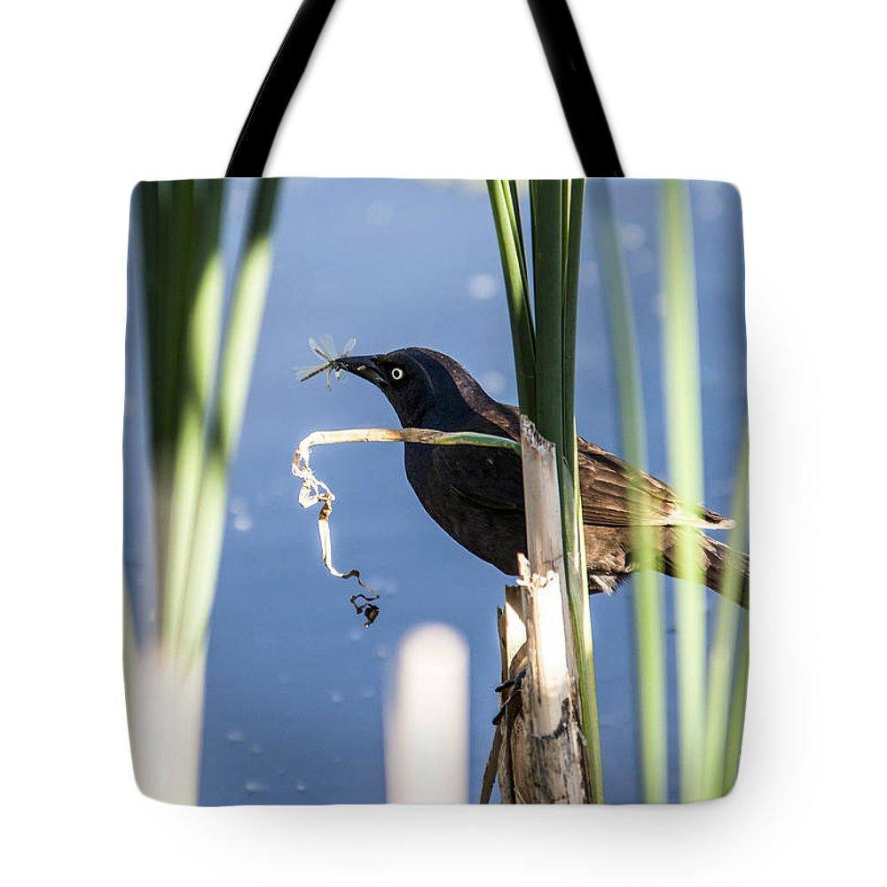 Spring Tote Bag featuring the photograph Midday Snack by Edward Peterson