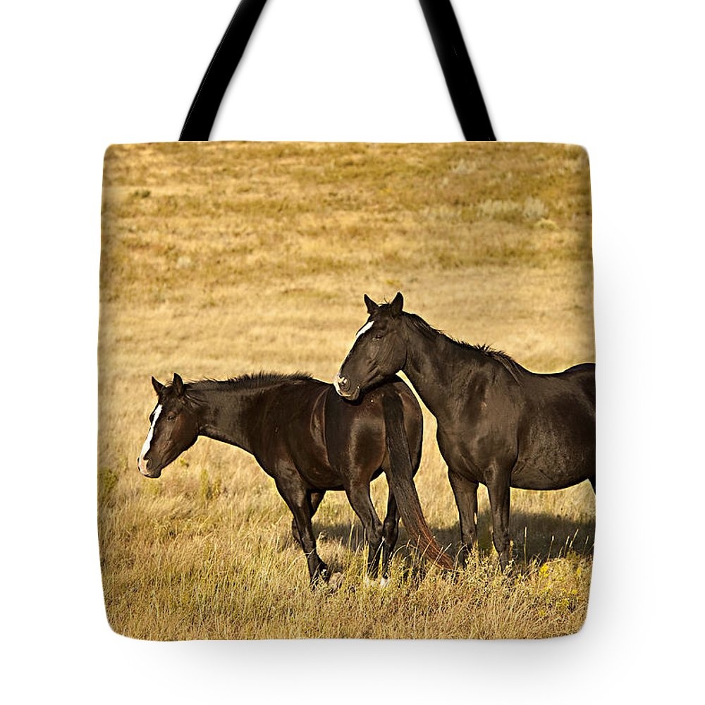 Horse Tote Bag featuring the photograph Midnight Blues by Jack Milchanowski