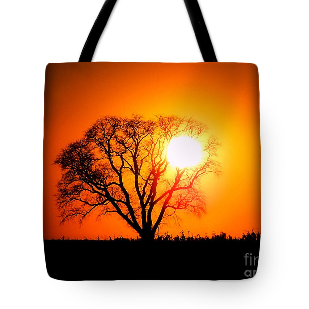 Mighty Tote Bag featuring the photograph Mighty Oak Sunset by Sharon Woerner