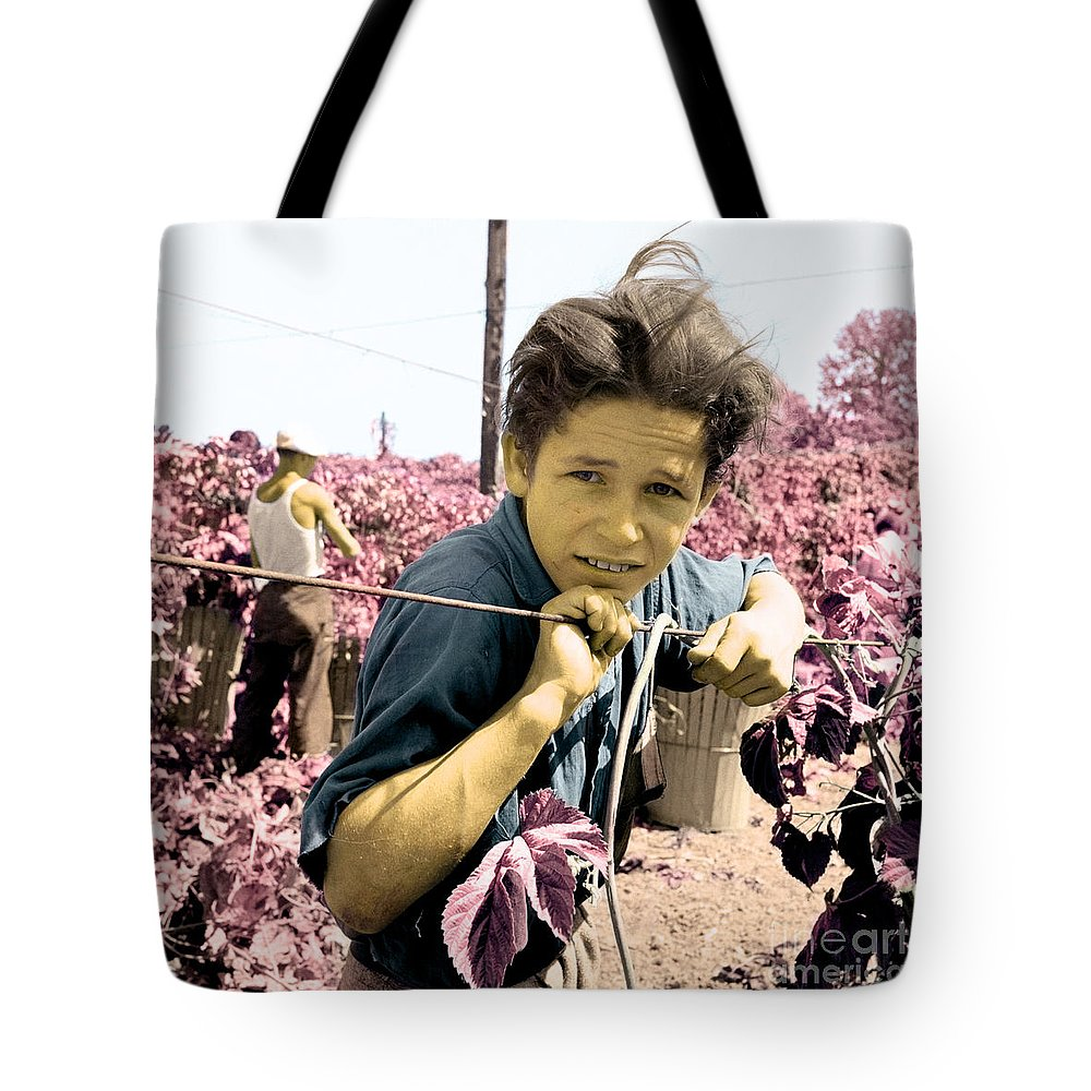 Migratory Boy Tote Bag featuring the photograph Migratory Boy by Celestial Images