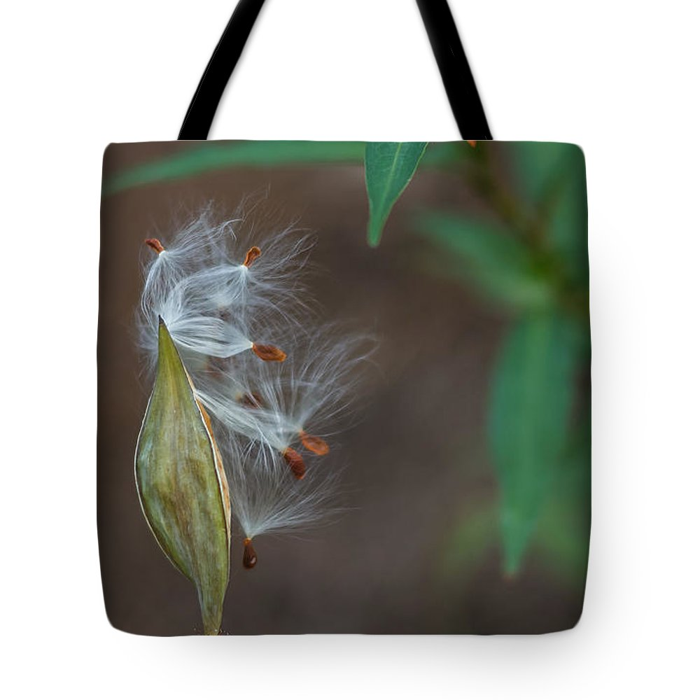 Florida Tote Bag featuring the photograph Milkweed Pod Bursting by Jane Luxton