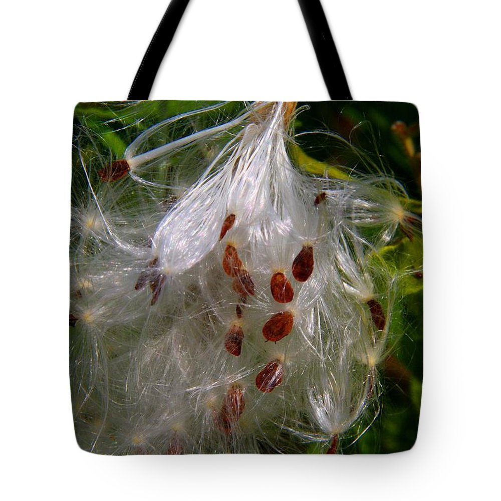 Milkweed Tote Bag featuring the photograph Milkweed Seeds by Kathryn Meyer