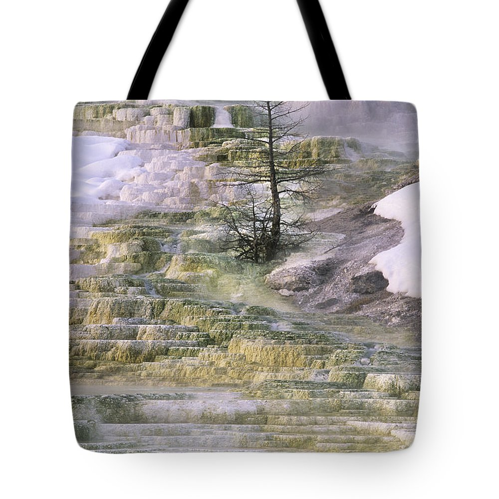 North America Tote Bag featuring the photograph Minerva Springs Terraces Yellowstone National Park by Dave Welling