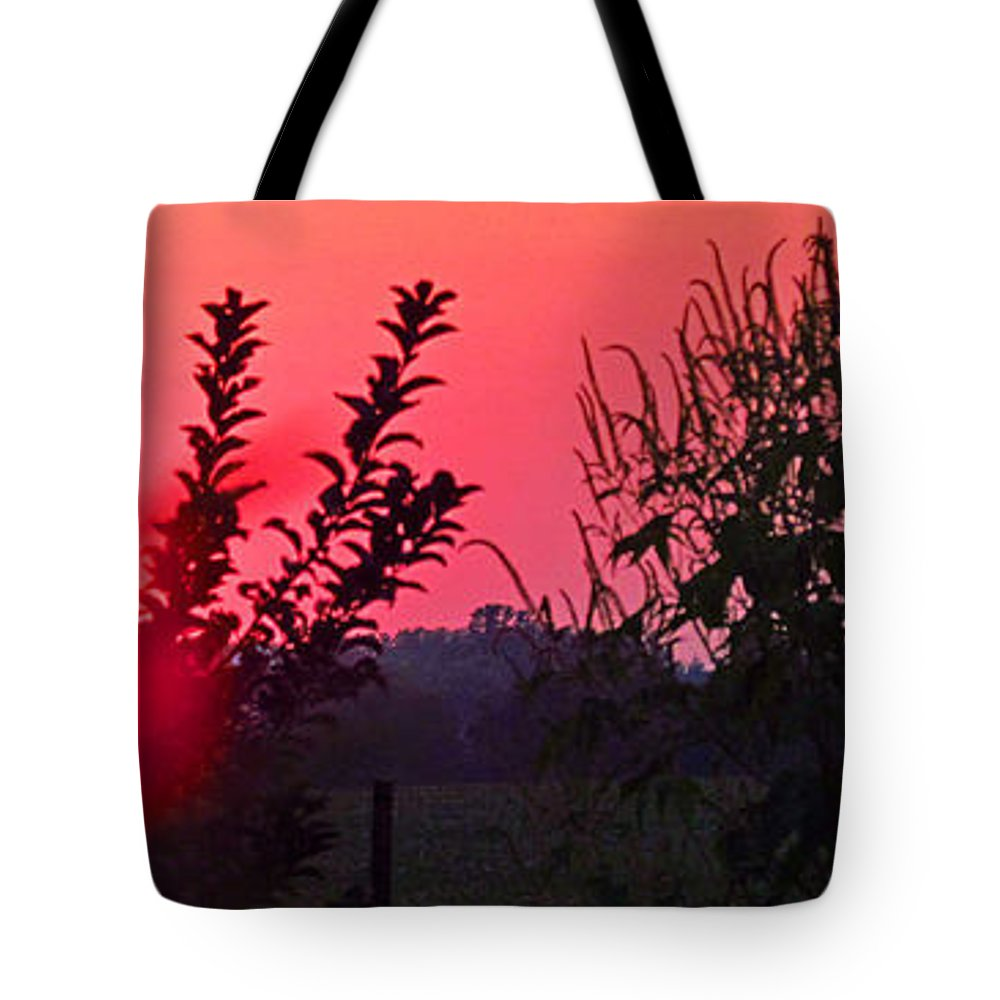 Sun Tote Bag featuring the photograph Mini Sunset by Tina M Wenger