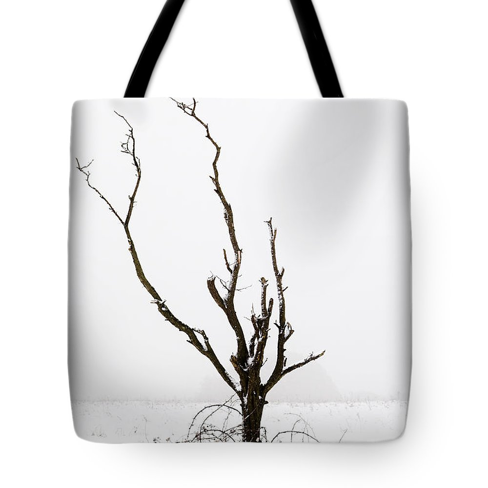 Snow Tote Bag featuring the photograph Minimal Tree by Mick House