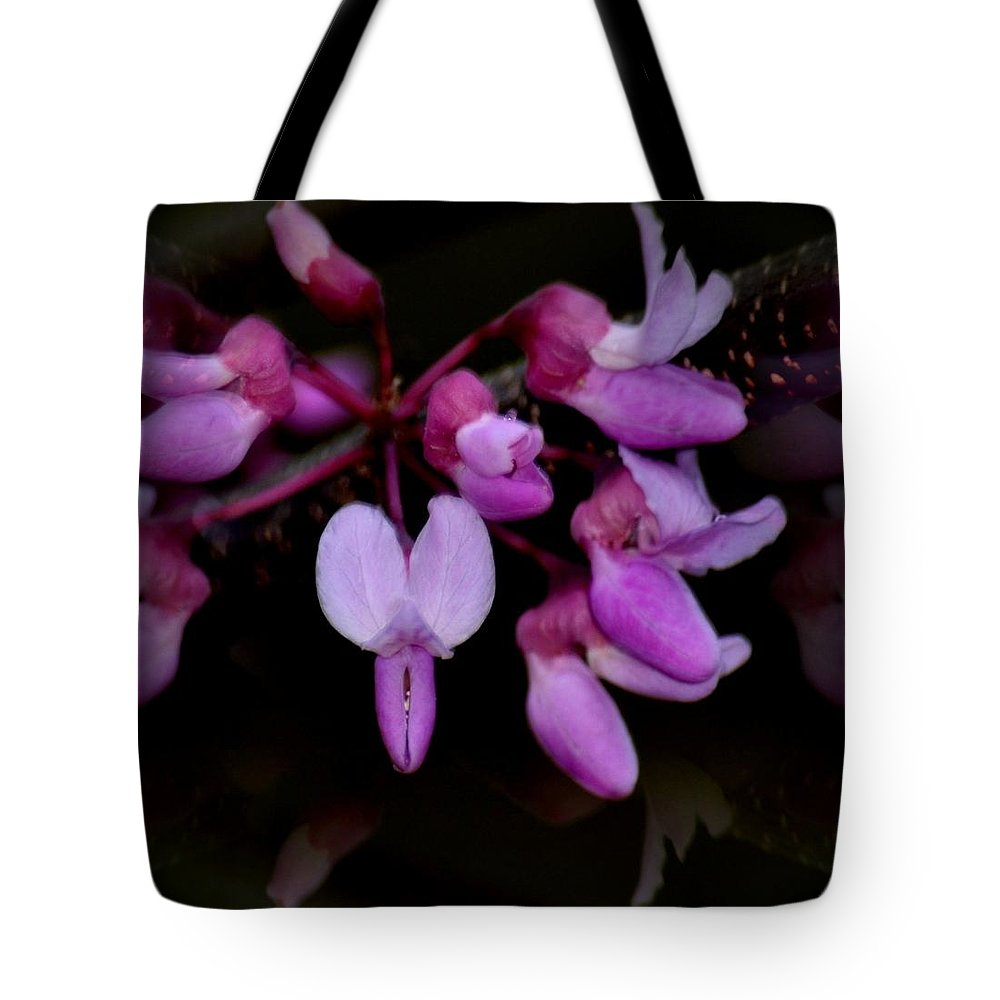 Mirrored Redbuds Tote Bag featuring the photograph Mirrored Redbuds by Maria Urso
