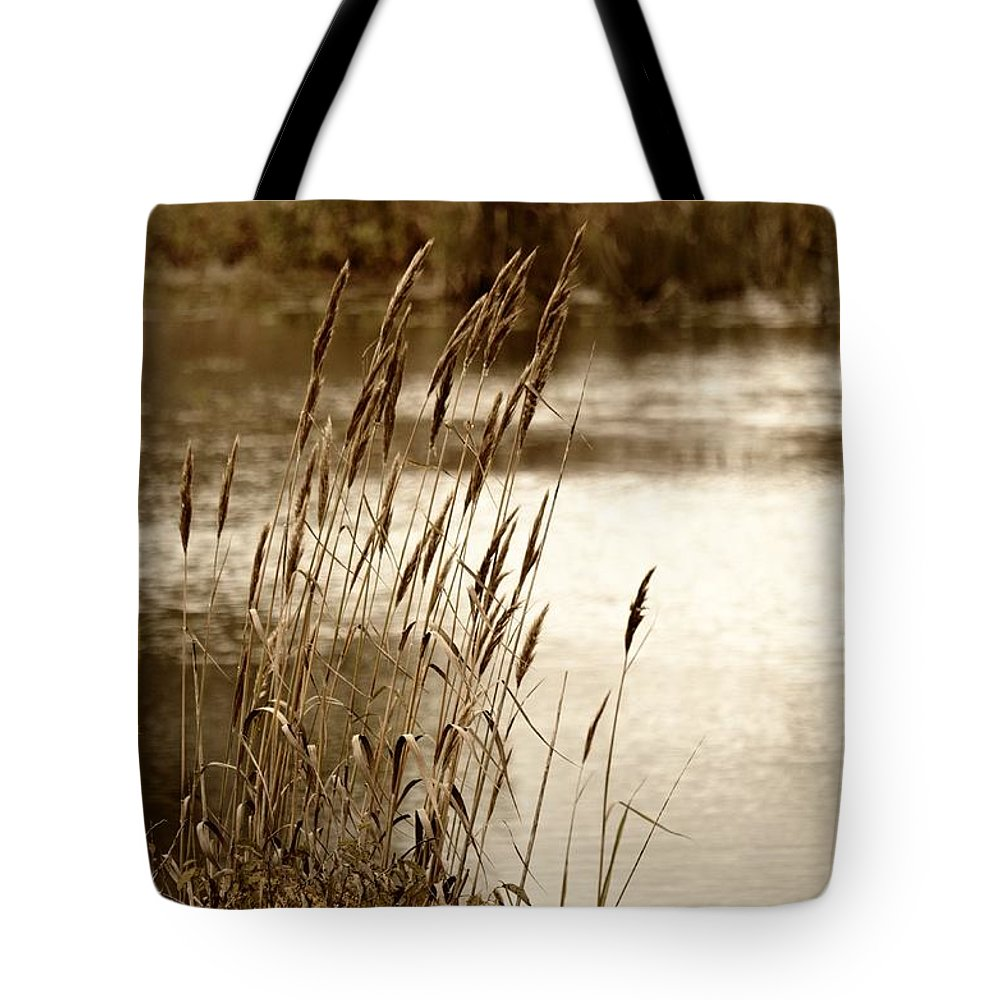 Mirroring Nature Tote Bag featuring the photograph Mirroring Nature by Maria Urso