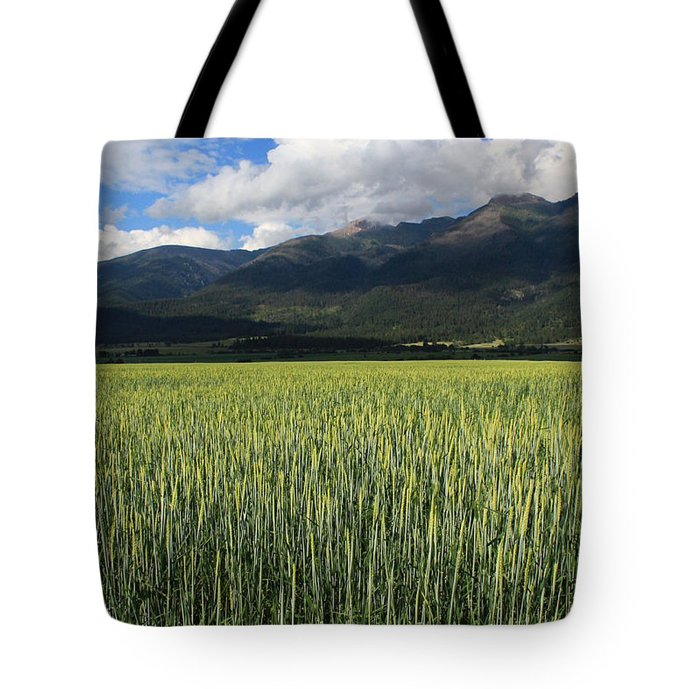 Light Green Stalks Tote Bag featuring the photograph Mission Valley Wheat by Jim Cotton