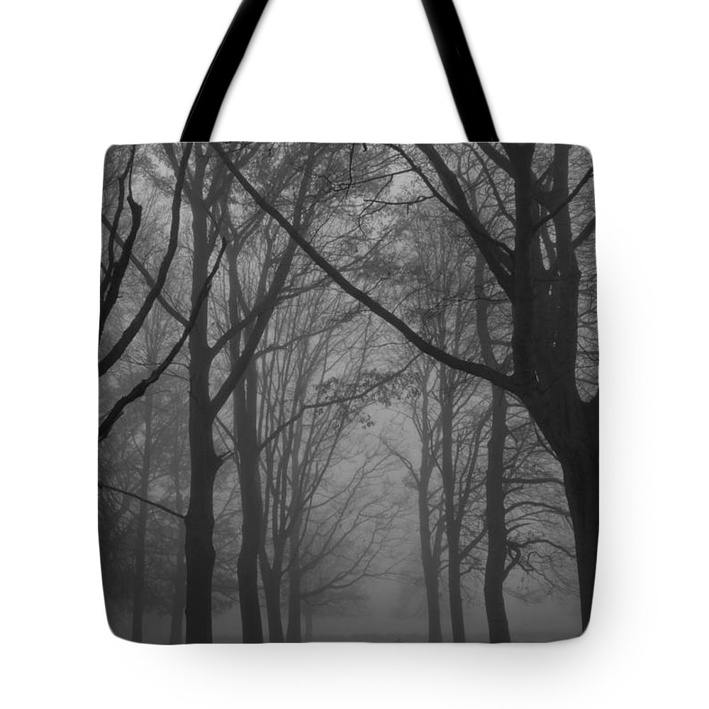 Mist Tote Bag featuring the photograph Mist In The Park by Maj Seda
