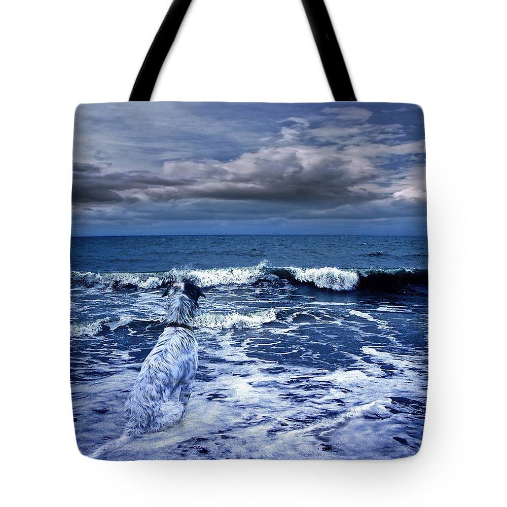 Sea Tote Bag featuring the photograph Mister Kallinski And The Sea by Joachim G Pinkawa