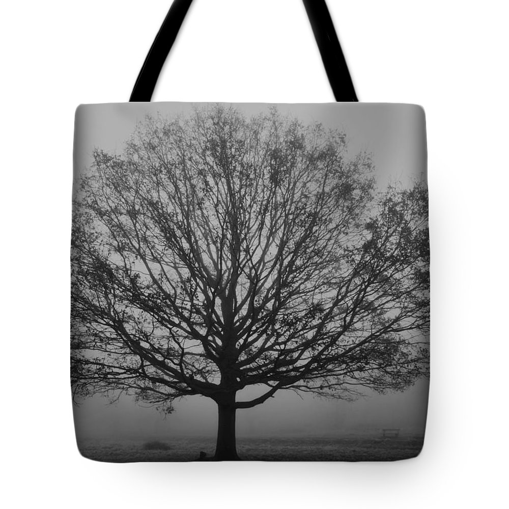Misty Tote Bag featuring the photograph Misty Nature  by Maj Seda