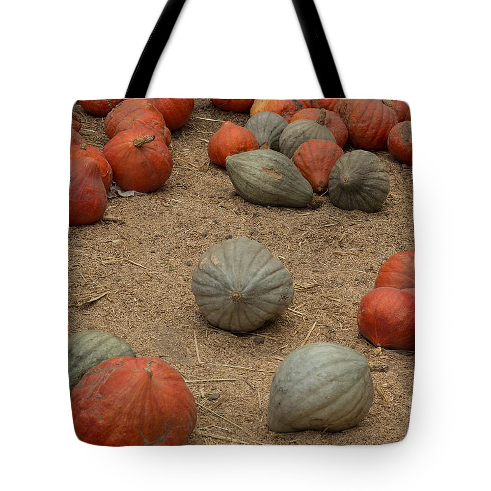 Pumpkins Tote Bag featuring the photograph Mixed Pumpkins by Suzanne Luft
