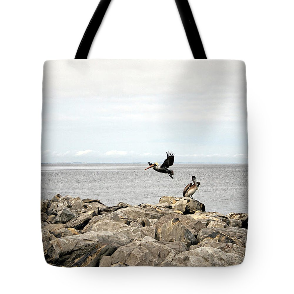 Landscape Tote Bag featuring the photograph Mobile Bay 8 by Earl Johnson