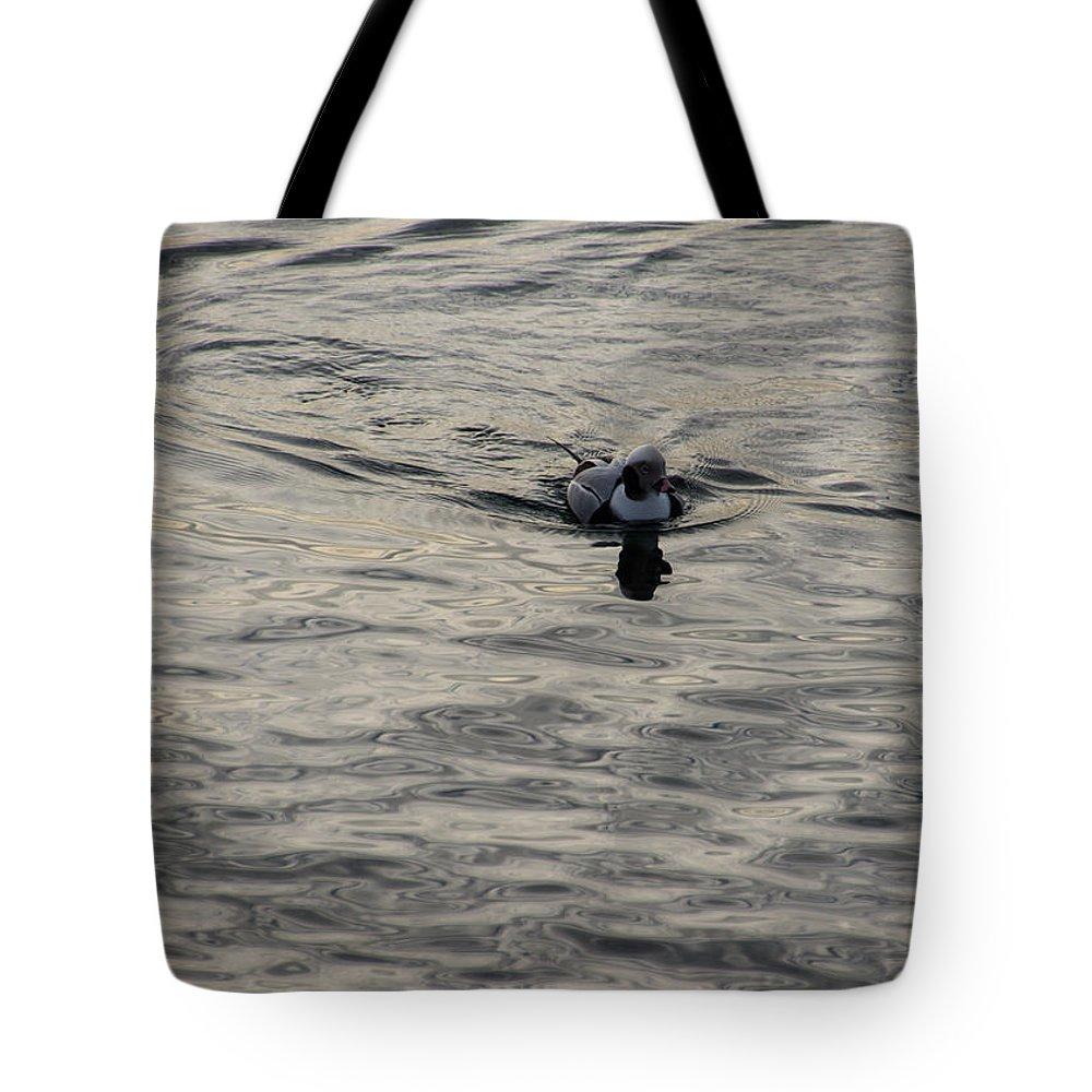 Georgia Mizuleva Tote Bag featuring the photograph Moire Silk Water And A Long Tailed Duck by Georgia Mizuleva