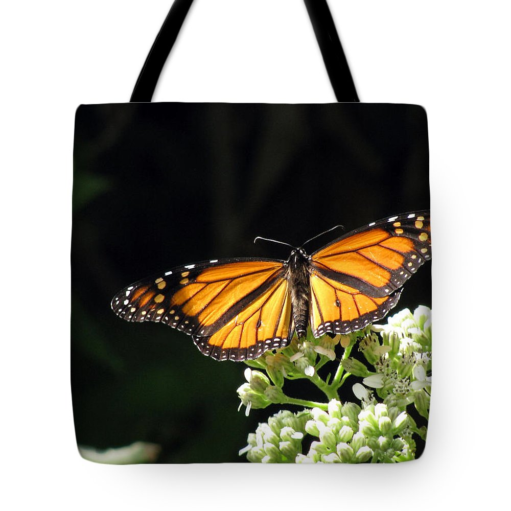 Butterfly Tote Bag featuring the photograph Monarch Butterfly 61 by Pamela Critchlow