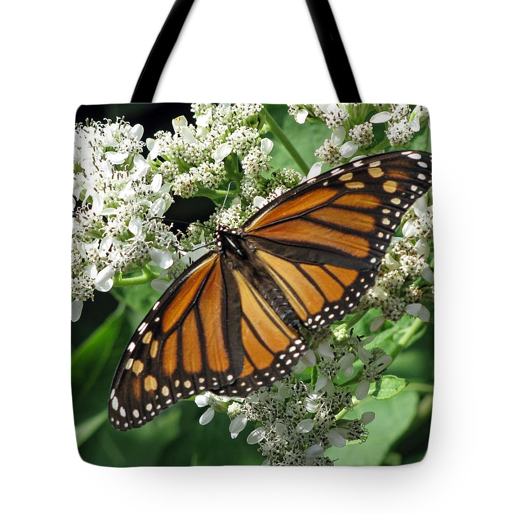 Butterfly Tote Bag featuring the photograph Monarch Butterfly 62 by Pamela Critchlow