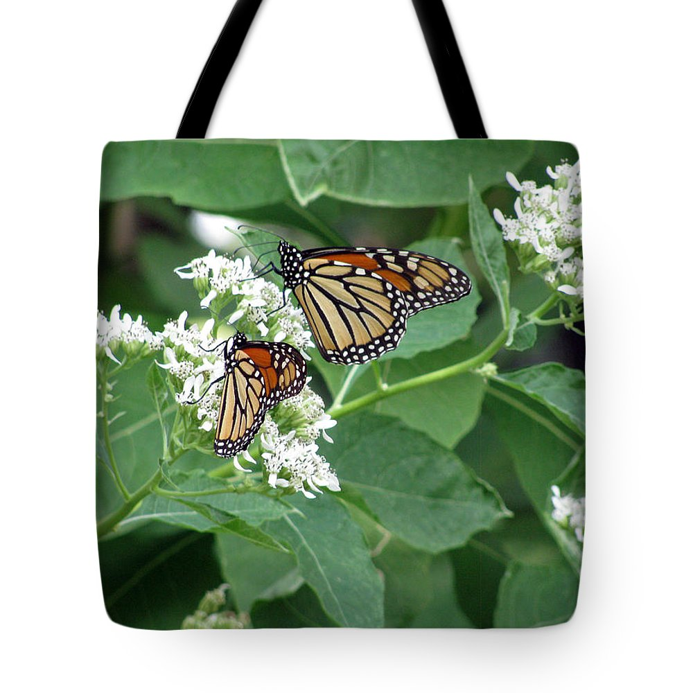 Butterfly Tote Bag featuring the photograph Monarch Butterfly 67 by Pamela Critchlow